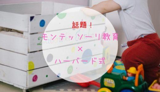 伊藤美佳さんの『モンテッソーリ教育×ハーバード式』でモンテ子育て