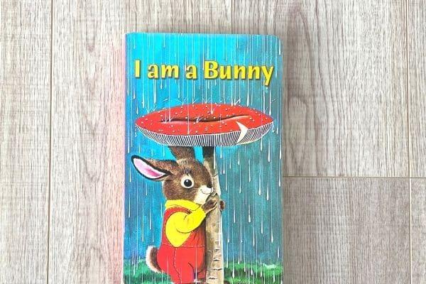 1歳英語絵本おすすめ I am a bunny